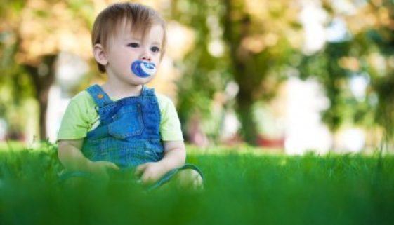 Babyartikel Online bestellen