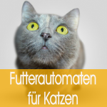 Futterautomaten und Wasserspender für Katzen und kleine Hunde